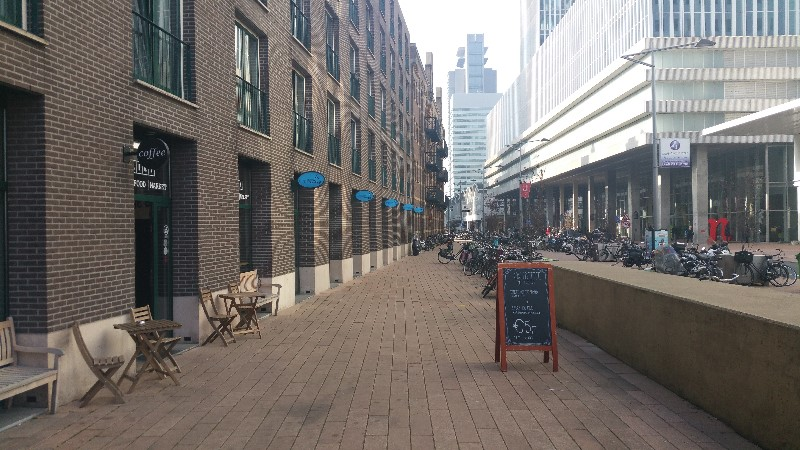 Latest reviews on Daily Rotterdam